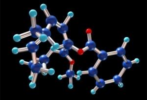 Pesquisadores da USP realizaram experimentos in�ditos com as enzimas do �lcool